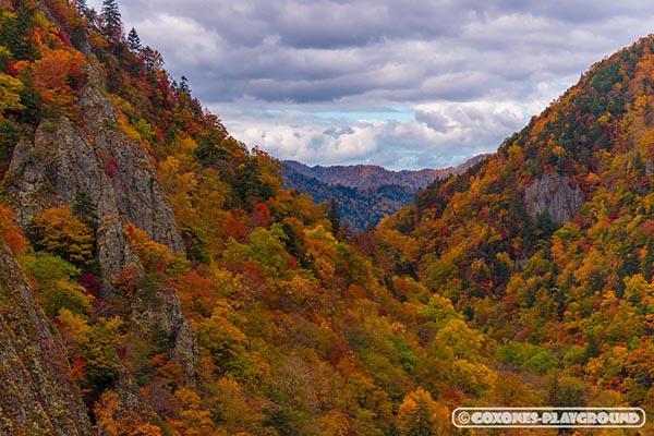 色鮮やかな紅葉の山々