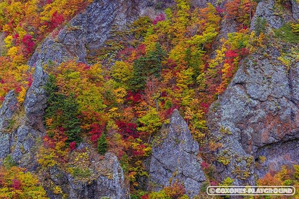 岩肌と紅葉