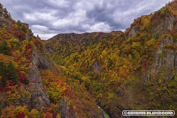 紅葉の色付く山