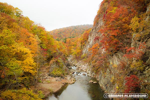 2016年訪問時の二見吊橋の橋上から眺められる紅葉と渓流