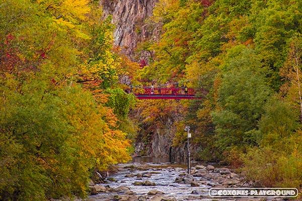 色付く紅葉と二見吊橋