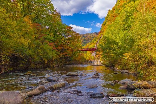 豊平川の上流から見上げた紅葉と二見吊橋