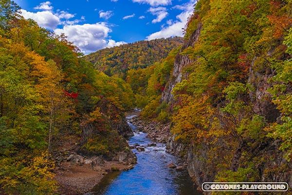 二見吊橋の橋上から眺められる紅葉と渓流が織りなす絶景