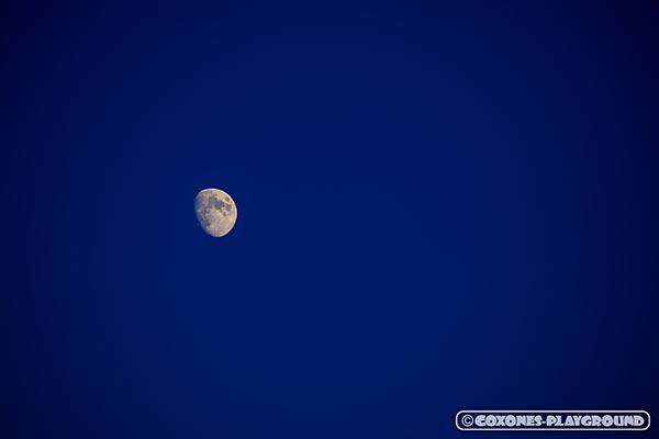 藻岩山山頂から見えた月