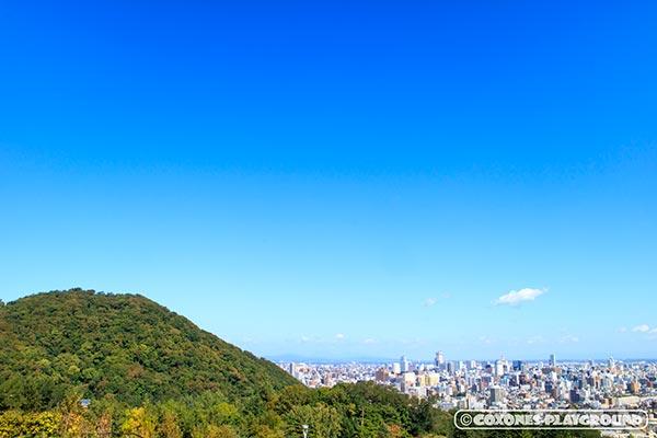 旭山記念公園から眺める円山とビル群