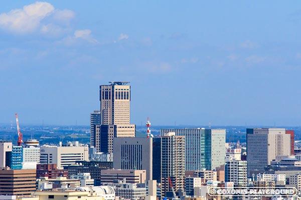 旭山記念公園からズームしたJRタワー(札幌駅)付近の風景