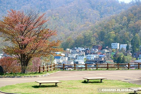 山の中腹付近まで広がる旭山記念公園近くの住宅街