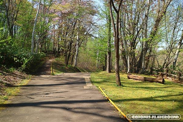 旭山記念公園の遊歩道