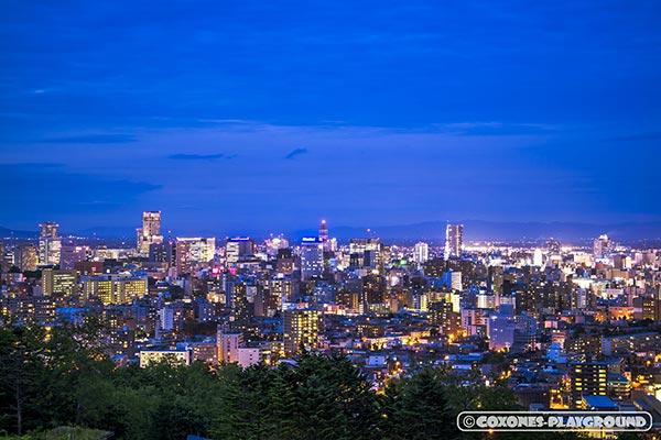 旭山記念公園から眺める札幌市中心部の夜景