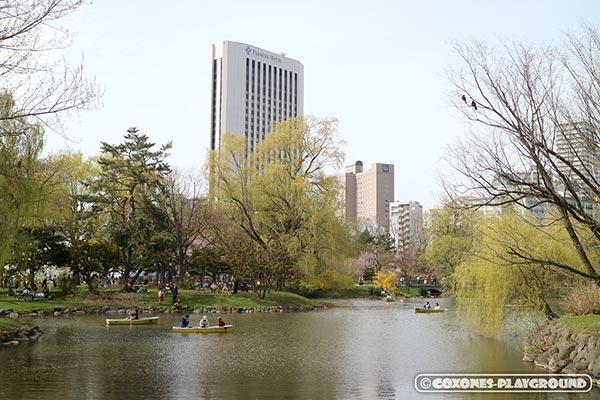 中島公園の菖蒲池と木々
